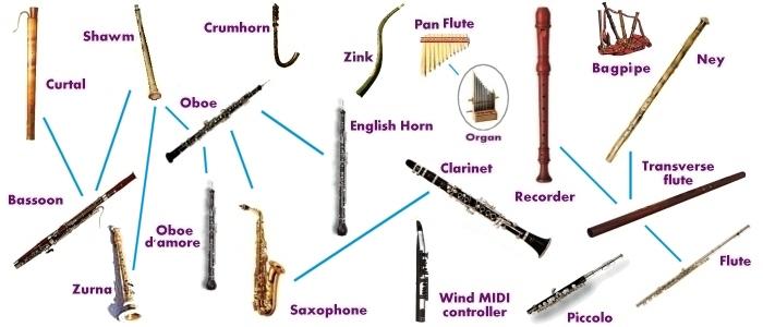 Musical Instruments Evolution