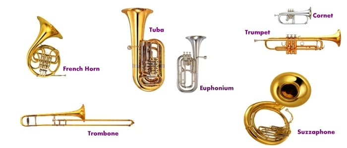 what is a brass instrument Helicon brass instrument the helicon is a brass musical instrument in the tuba family most are b♭ basses, but they also commonly exist in e♭, f, and tenor sizes .